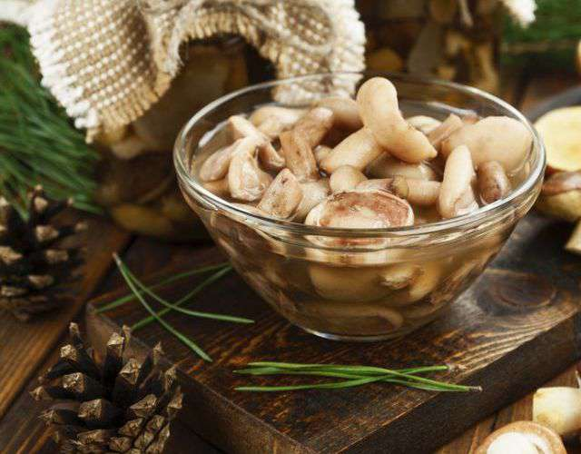 диета магги грибы